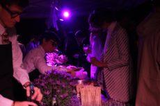 casa fornasetti party